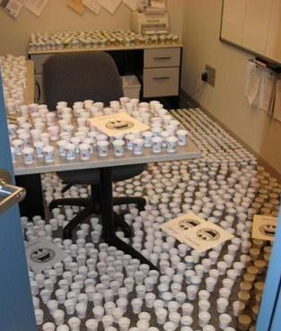 розыгрыш на 1 апреля в офисе: пластиковые стаканчики
